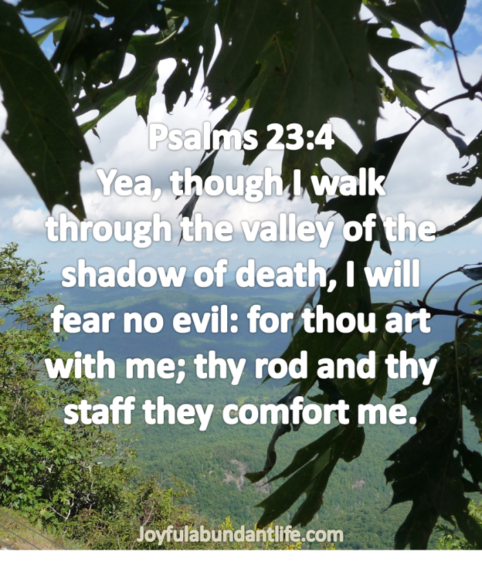 Psalms 23:4 Yea, though I walk through the valley of the shadow of death, I will fear no evil: for thou art with me; thy rod and thy staff they comfort me.
