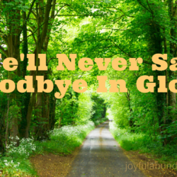 Just Remember: We'll never say goodbye in Glory