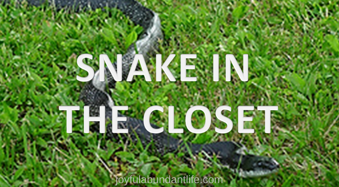 Have you ever had a snake in your closet or in your house?