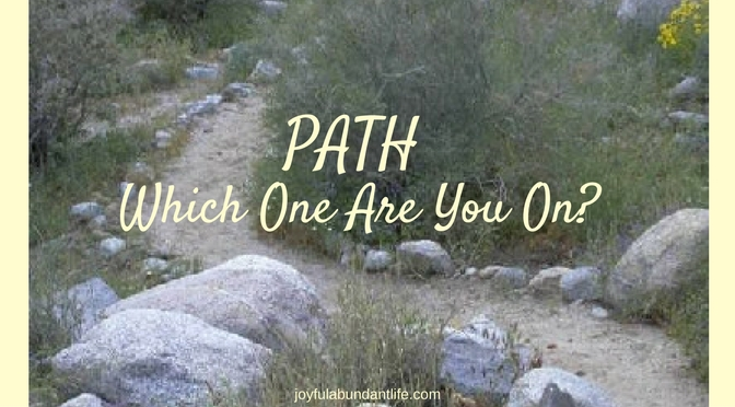 Path-Which One Are You On
