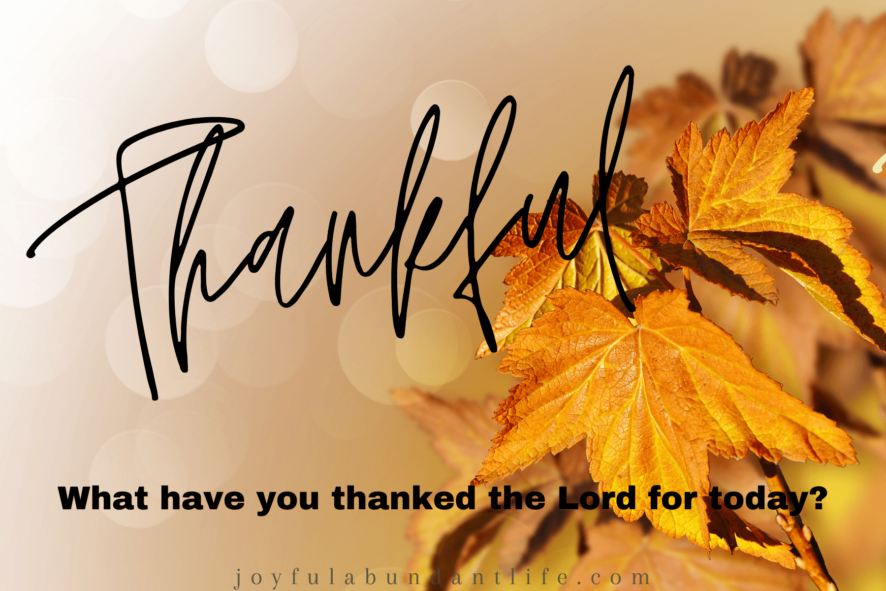 Give thanks to God whether in trying times or mundane times
