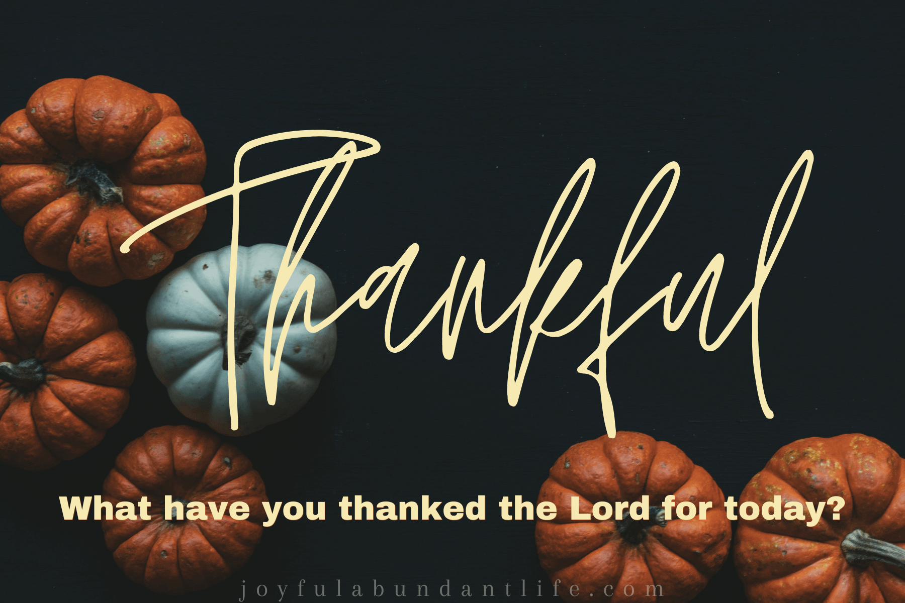 Are you thankful? I am beloved of God