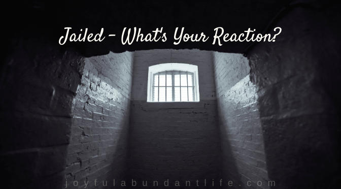 Jailed - What's Your Reaction?